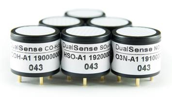 Dual Sensors (CO – H2S)